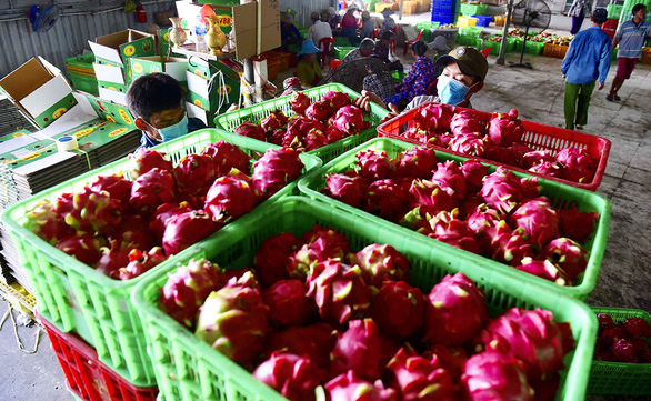 Nông sản Việt sẵn sàng vào EU - Ảnh 1.