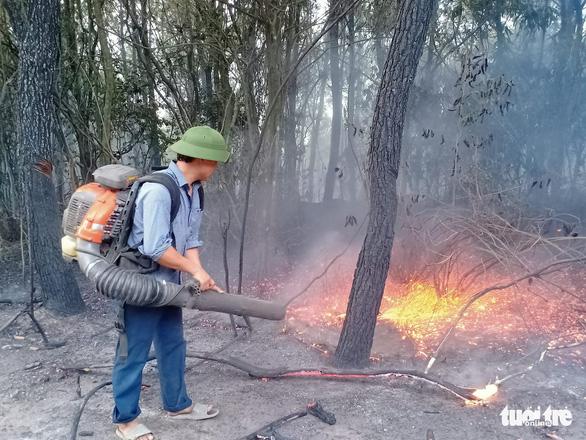 Triệu tập người phụ nữ nghi đốt rác gây cháy rừng ở Nghệ An - Ảnh 1.