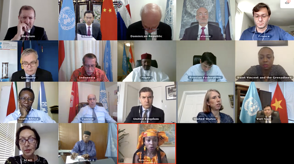 Sáu tháng của Việt Nam tại Hội đồng Bảo an Liên Hiệp Quốc - Ảnh 2.