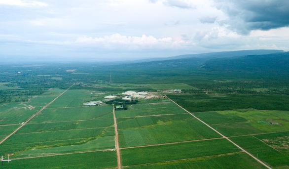 TTC Sugar tiếp tục mở rộng vùng nguyên liệu trồng mía organic tại Lào - Ảnh 2.