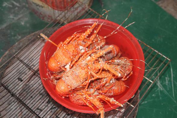 Xách balô lên để thấy biển Ninh Thuận - Khánh Hòa mình đẹp lắm - Ảnh 5.