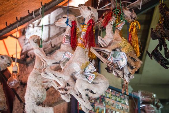Đi chợ chuyên doanh bùa: xác cóc ếch khô, nhau thai khô, công thức kích thích... - Ảnh 4.