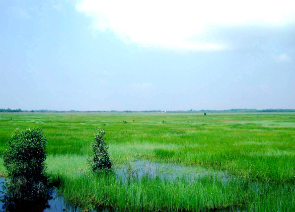 Tìm về thiên đường xanh ở khu bảo tồn Láng Sen - Ảnh 3.