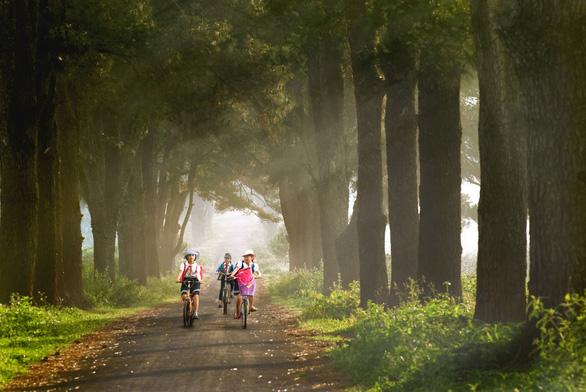 Thời tiết quanh năm mát mẻ, Gia Lai tung loạt tour kích cầu du lịch - Ảnh 2.