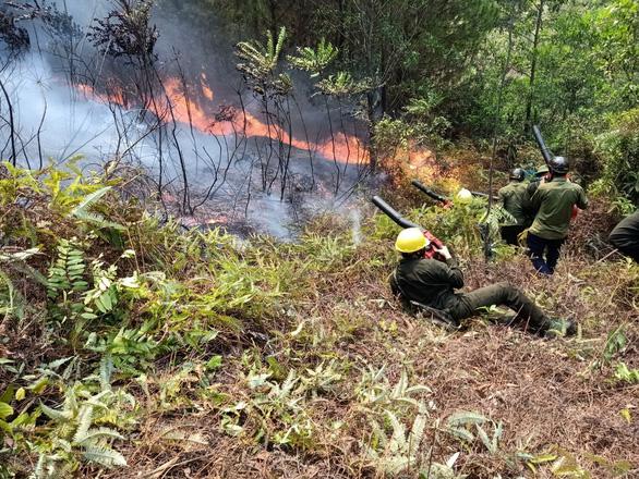Hàng trăm người suốt đêm dập tắt rừng thông cháy - Ảnh 2.