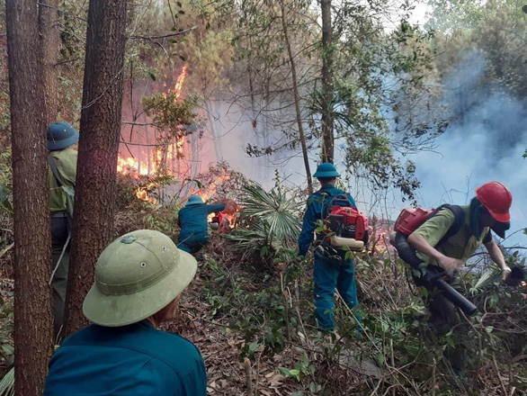 Hàng trăm người suốt đêm dập tắt rừng thông cháy - Ảnh 1.