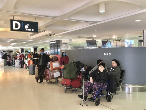 Thêm hơn 350 người Việt từ Úc, New Zealand về tới Tân Sơn Nhất - Ảnh 1.