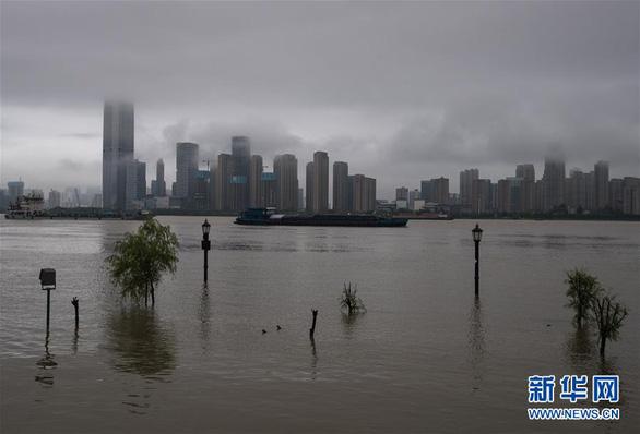 Từng đứng hình vì virus, Vũ Hán lại bị nhấn chìm dưới mưa như trút - Ảnh 3.
