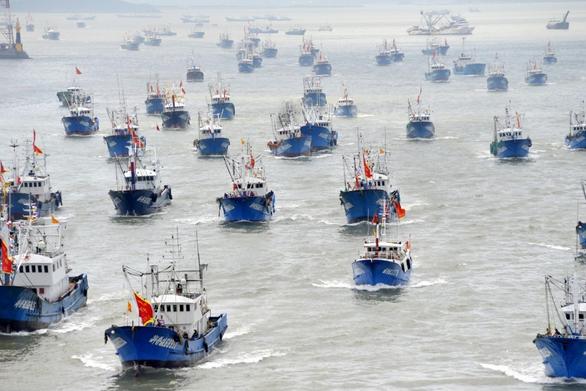 Vét sạch mực ở biển Nam Mỹ, Bắc Kinh áp đặt luôn lệnh cấm đánh bắt - Ảnh 1.