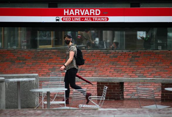 Chỉ 40% sinh viên Harvard được phép trở lại trường sau dịch COVID-19 - Ảnh 1.
