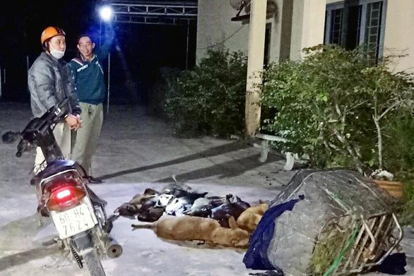 Bắt quả tang 'cẩu tặc' mang 10 con chó trộm được đi tiêu thụ - Ảnh 1.