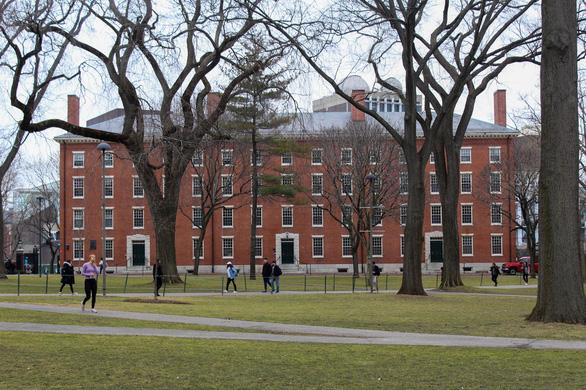 ĐH Harvard, Viện MIT kiện chính sách bắt du học sinh hồi hương là phi pháp - Ảnh 1.