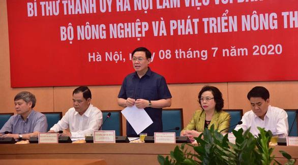 Hà Nội muốn làm đê kết hợp đường, làm đô thị hai bên sông Hồng - Ảnh 1.