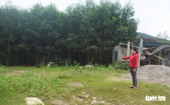 Qua rà soát phát hiện Nghệ An có hơn 11.400 vụ cấp đất trái thẩm quyền - Ảnh 2.