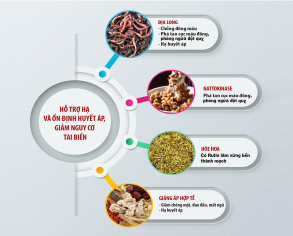 Xu hướng mới trong điều trị tăng huyết áp và phòng ngừa đột quỵ - Ảnh 5.