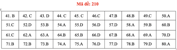 Đề và bài giải môn hóa kỳ thi tốt nghiệp THPT 2020 - Ảnh 9.