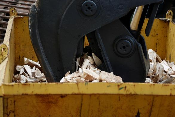 Singapore tiêu hủy 9 tấn ngà voi bằng nghiền nát và thiêu rụi - Ảnh 2.