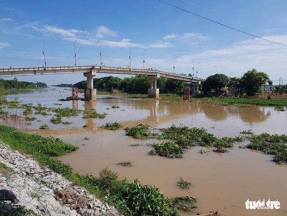 Mực nước các sông ĐBSCL đang lên, đỉnh lũ có thể cuối tháng 9 - Ảnh 2.