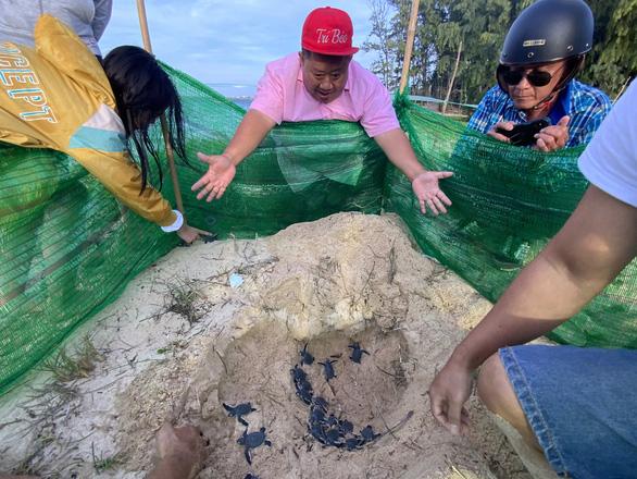 45 rùa con quý hiếm và 51 ngày cưu mang của dân đảo Phú Quý - Ảnh 2.