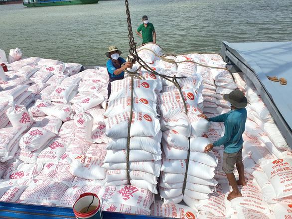 Gạo xuất khẩu tăng giá: đừng vui quá - Ảnh 1.