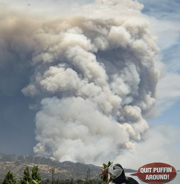 Cháy rừng ở Nam California, gần 8.000 người sơ tán - Ảnh 5.