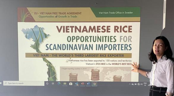 Thêm cơ hội xuất khẩu gạo Việt sang Thụy Điển từ EVFTA - Ảnh 1.