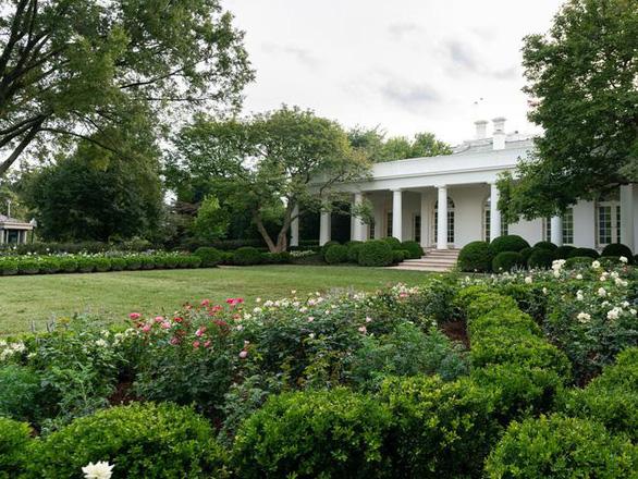 Vườn hồng Nhà Trắng của bà Melania Trump bị chê buồn chán - Ảnh 1.