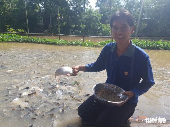 Chi tiền triệu nuôi đàn cá hàng ngàn con kéo đến sống trên kênh Thần Nông - Ảnh 5.