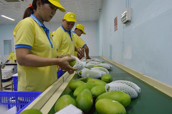 Cục Bảo vệ thực vật sẽ làm việc với hải quan Trung Quốc về chuyện trái cây mạo danh - Ảnh 1.
