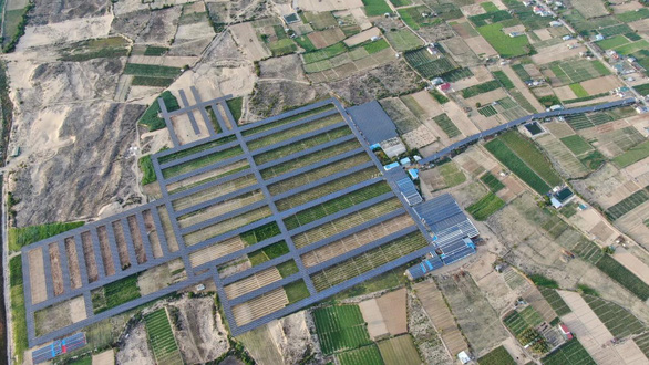 Nông nghiệp kết hợp điện áp mái thiệt hại tiền tỉ vì thiếu hướng dẫn - Ảnh 1.