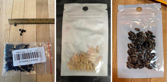 Có gì trong các gói hạt giống bí ẩn gửi từ Trung Quốc? - Ảnh 1.
