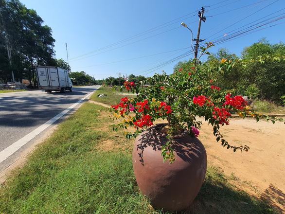 Trồng hoa trong lu dọc đường: đa số người dân ủng hộ vì đẹp đường sá, đẹp làng quê - Ảnh 1.
