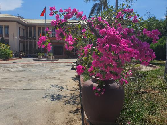 Trồng hoa trong lu dọc đường: đa số người dân ủng hộ vì đẹp đường sá, đẹp làng quê - Ảnh 2.