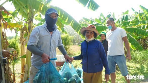 Bạn trẻ Đà Nẵng vào tận vườn giải cứu đu đủ Quảng Nam mắc kẹt vì dịch - Ảnh 1.