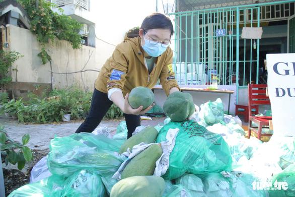 Bạn trẻ Đà Nẵng vào tận vườn giải cứu đu đủ Quảng Nam mắc kẹt vì dịch - Ảnh 7.