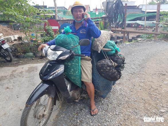 Nước lũ đã tràn đồng giáp biên giới Campuchia, chưa thấy cá tôm - Ảnh 5.