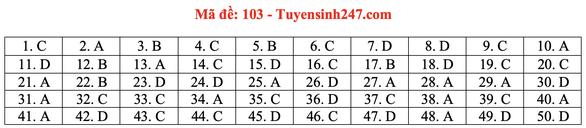 Gợi ý bài giải môn toán thi tốt nghiệp THPT 2020 - đủ 24 mã đề - Ảnh 8.