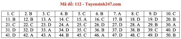 Gợi ý bài giải môn toán thi tốt nghiệp THPT 2020 - đủ 24 mã đề - Ảnh 17.