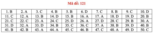 Gợi ý bài giải môn toán thi tốt nghiệp THPT 2020 - đủ 24 mã đề - Ảnh 26.