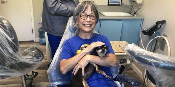 Gặp cô chó không răng chuyên an ủi bệnh nhân ở phòng nha - Ảnh 1.