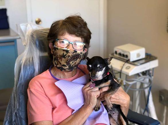 Gặp cô chó không răng chuyên an ủi bệnh nhân ở phòng nha - Ảnh 2.