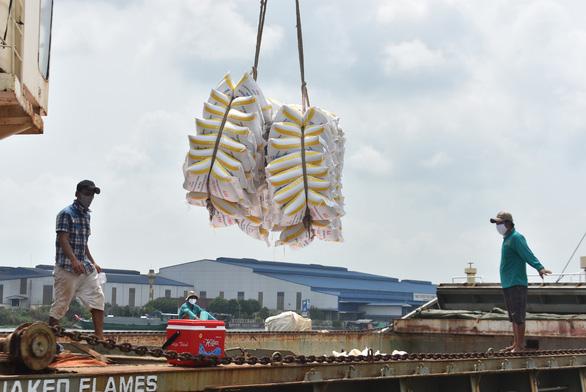 Gạo Việt rộng cửa vào châu Âu - Ảnh 3.