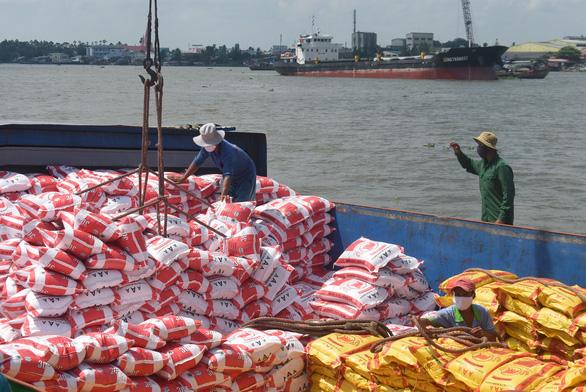 Gạo Việt rộng cửa vào châu Âu - Ảnh 1.