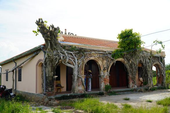 Trùng tu ngôi đình hơn 100 tuổi, giữ nguyên hai cây bồ đề độc đáo trên nóc - Ảnh 3.