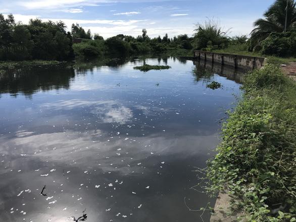 Khu công nghiệp lớn nhất Sóc Trăng gây ô nhiễm môi trường - Ảnh 1.