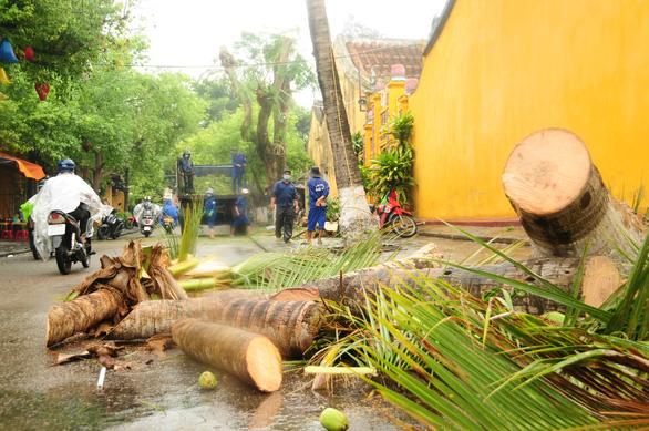 Nông dân hối hả gặt lúa sớm, phố cổ đốn bớt cây tránh bão - Ảnh 4.