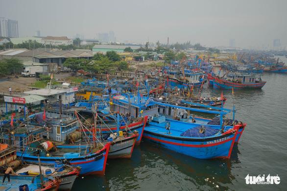 Bão số 5: Đà Nẵng di dời 72.000 dân trước 20h hôm nay 17-9 - Ảnh 2.