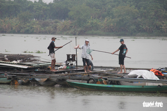 Vận động người nuôi cá lồng bè lên bờ tránh bão - Ảnh 7.