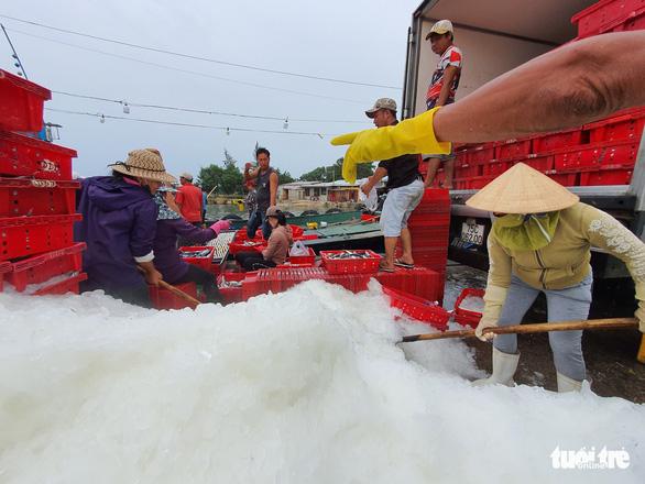 Cảng cá lớn nhất Thừa Thiên Huế hối hả trước giờ bão vào - Ảnh 5.