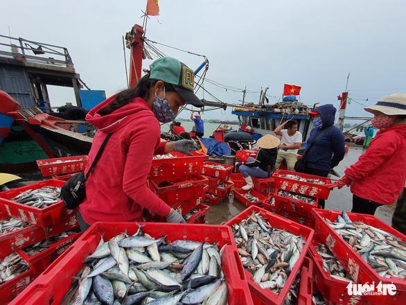 Cảng cá lớn nhất Thừa Thiên Huế hối hả trước giờ bão vào - Ảnh 6.